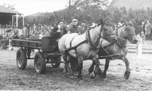 Concours Hippique 1957 Boerenwagen met Jaap vd Bijl