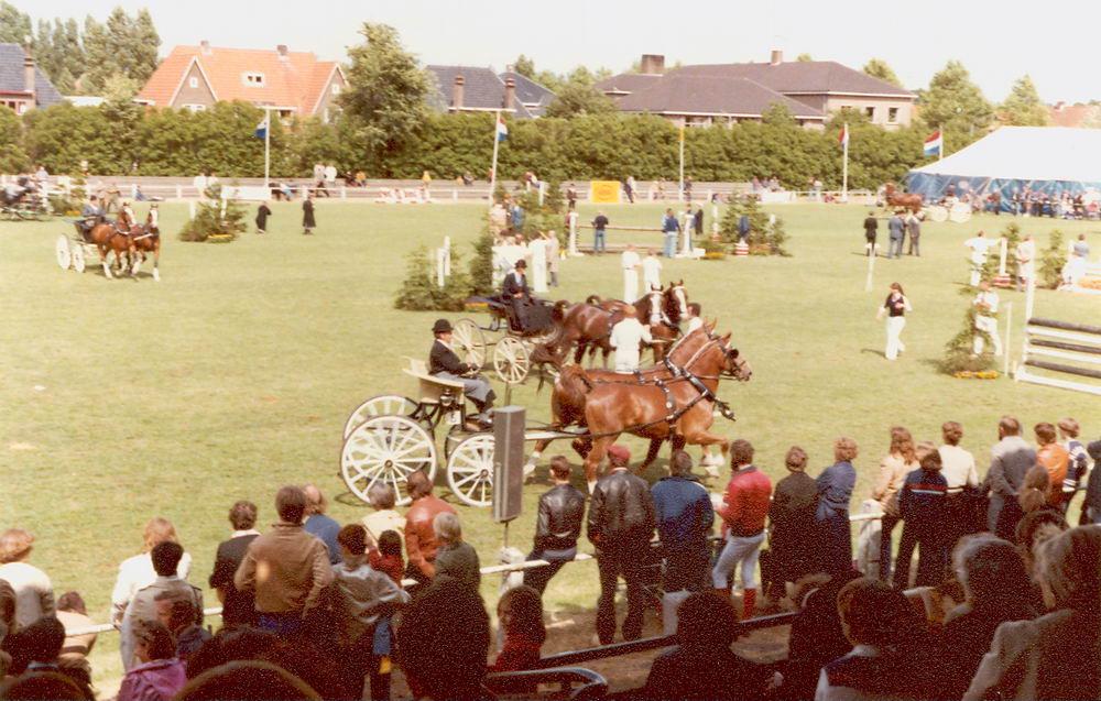 Concours Hippique 1978