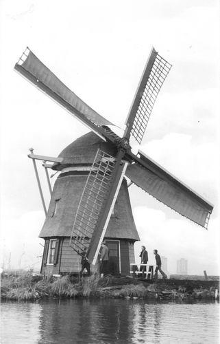 Cruquiusdijk 01__ Overzijde 1973 Molen de Hommel