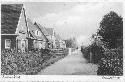 Dennenlaan 1937