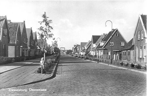 Dennenlaan O 0104ev 1956