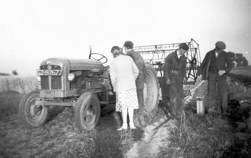 Erwtenmaaien 1954 bij Jan Rosendaal aan IJweg 03