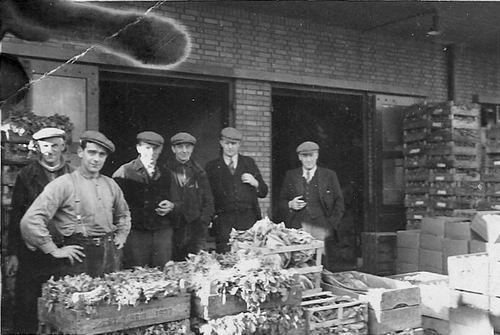 Es Teunis v 1906 1950 op Groentenveiling