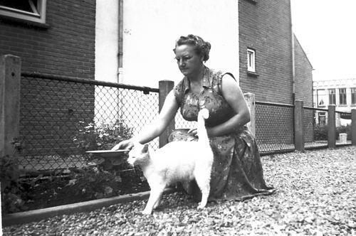 Galis-Verzaal Lena 1956 op Erf met kat