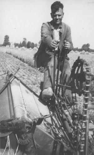 Geertzema Galtjo J J 1911 1947 Korenoogst