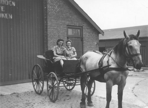 Geertzema-Smit Maartje 19__ op Paard en Wagen