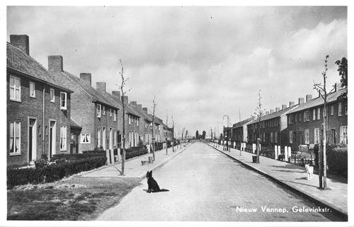 Gelevinkstraat 1952 zicht vanaf Venneperstraat