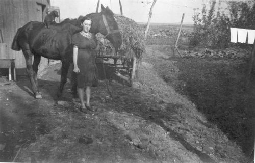 Groef-Elshout Hendrika vd 19__ met Paard op Erf