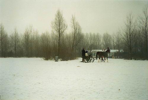 Haarlemmermeerse Bos 19__ IJspret 01