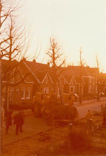 Hoofdweg W 0741 1977 Eersteling Verplaatsing 82_2