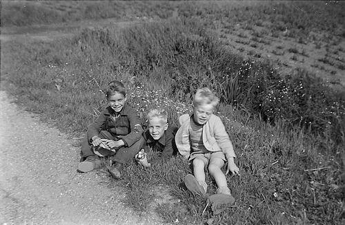 Hoogeveen Arie 1956 met broertjes Waaijman