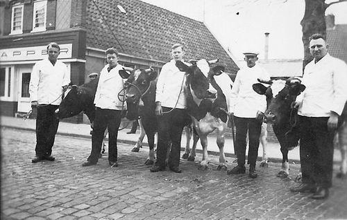 Hoogeveen Henk 193_ met Slagers en Koeien in Aalsmeer