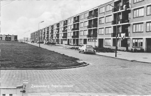 Populierenlaan 1959