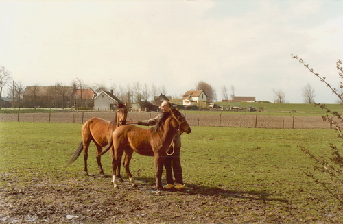 IJweg W 0935-945 19__ met Frans Koeckhoven bij paarden