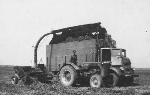 Klaver Hakselen 1951 bij boer Roosendaal 01