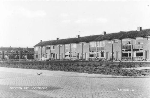 Koegrasstraat 1962