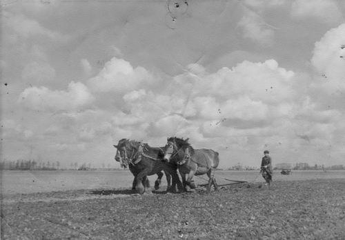Koter Henk de 1940 Ploegen bij boer Cor Schouten