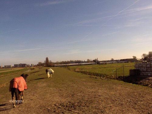 Kruisweg N 0463 2011 Hmeer Spoorlijn bij Brouwer 06