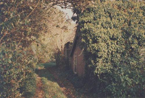 Kruisweg N 0865 1988 Huize vd Helm 02 oprit perceel