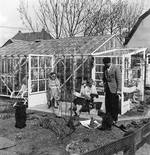 Lijnderdijk 0277 1960 Achtertuin met echtpaar Teun v Es