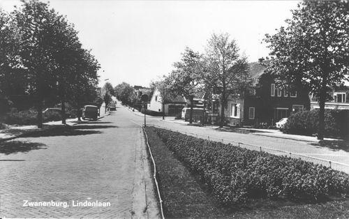Lindenlaan 1971 Zicht vanaf Dijk