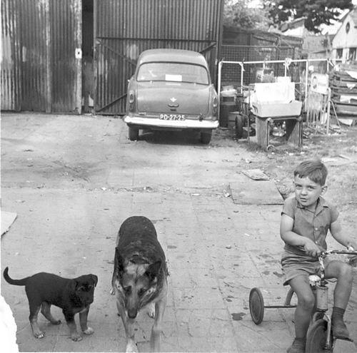 Marktplein N 0001a 1964 Erf Achter met Fred vd Groef