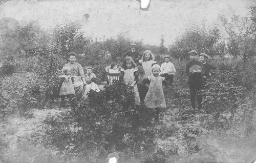 Oever Teunis van den 1916 met fam bessenplukken