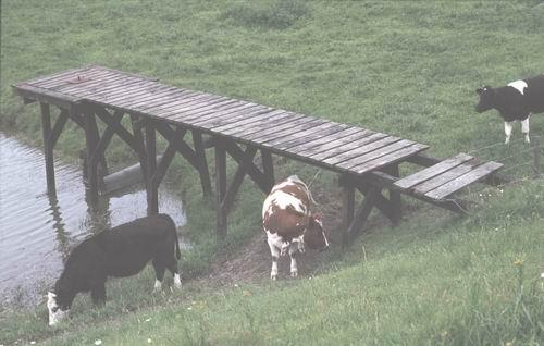 Spieringweg W 062_ 1978-80 Fort 04