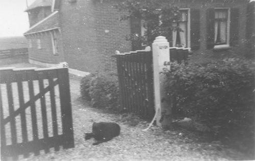 <b>ZOEKPLAATJE:</b>&nbsp;Onbekend Aalsmeer 1950 van Boekenmarkt 09