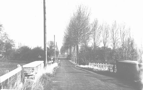 Rijnlanderweg O 090_ 19__ bij Geniedijk zicht naar Noorden