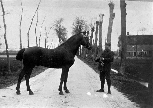 <b>ZOEKPLAATJE:</b>&nbsp;Onbekend Rijk Man met Paard op de Weg