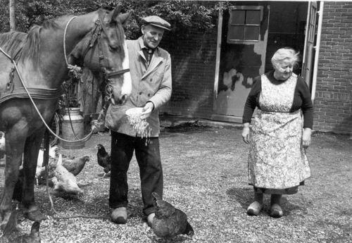 Aalsmeerderweg W 0499 1958 Melkboer Peters