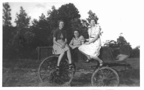 Limpt Dina v 194_ op Boerenkar met zusters