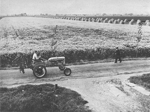 <b>ZOEKPLAATJE:</b>&nbsp;Onbekend Tractor met op Polderweg 1955
