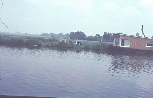 <b>ZOEKPLAATJE:</b>&nbsp;Onbekend Vijfhuizerdijk Overzijde 04204