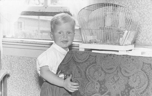 Overbeek Teun 1955 19__ Peuter bij Zebravink