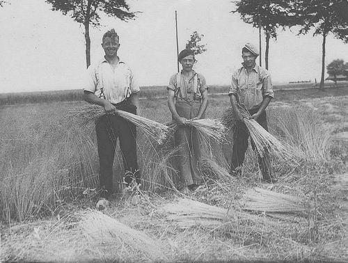 <b>ZOEKPLAATJE:</b>Poortvliet Daan 1916 19__ Vlastrekken met Onbekenden
