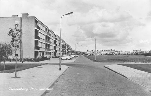 Populierenlaan 1965