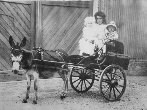 Reeuwijk Suze v 1911 191_ op Ezelswagen met Hein en Lena de Ridder