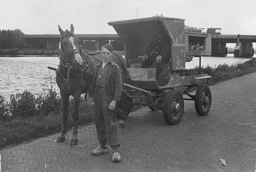 Rip Jaap Jr 1954 met vader Jaap in Paardenwagen