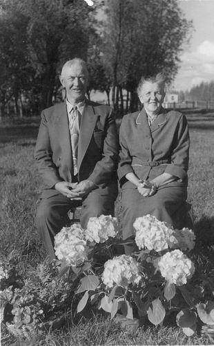 Schijff Cornelis M 1950 Huwelijksfeest met Lena Adriana Gortzak 02