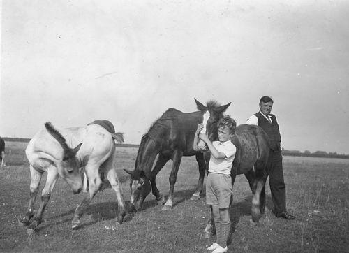 Slooten Jaap 19__ met Neefie Jaap tussen de Paarden