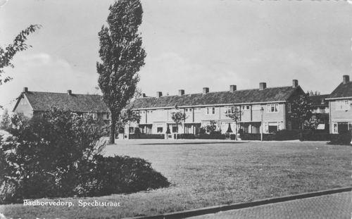 Spechtstraat 1962