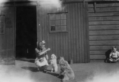 Tuinweg Z 0023 1941 met Zwaan en Cees Bosman en Honden