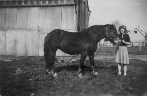Tuinweg Z 0020± 1943 Loods Jan Koole met Zwaan Bosman en Paard Nelly