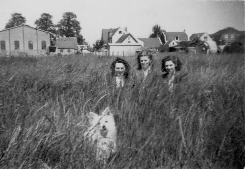 Tuinweg Z 0020± 1943 achterzijde Huizen Hoofdweg en Buurtmeiden 01