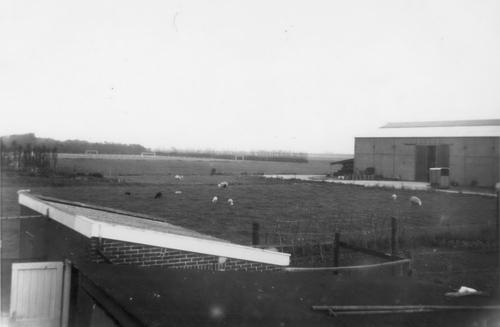 Tuinweg Z 0080± 1967 Voetbalvelden Hoofddorpse Boys