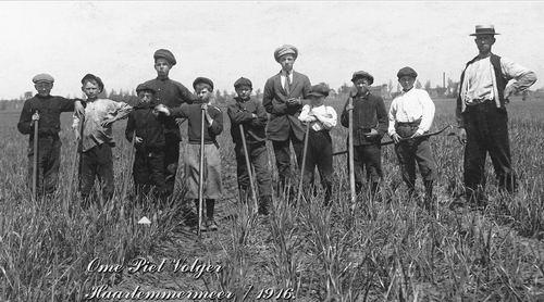 Volger Piet 1907 1916 in het Land Onkruid Wieden