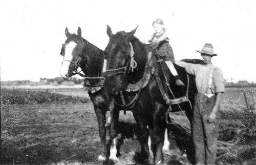 Vos Dries de 1934 met Onbekend Meisje op 2-Span