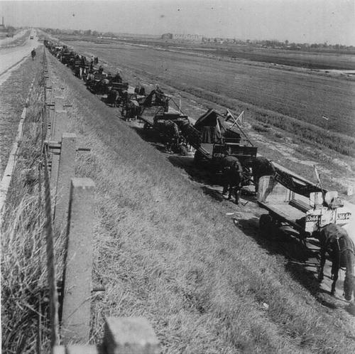 WO II 194505 Voedseldroppings Wagens langs Haagweg voor transport